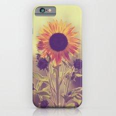 Sunflower 01 Slim Case iPhone 6s