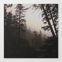 Oregon Coastal Forest Canvas Print