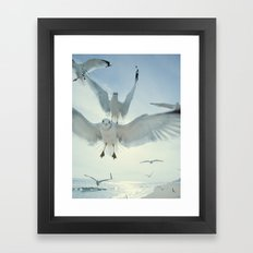 Seagulls {Five} Framed Art Print
