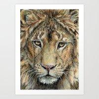 Lion 325 Art Print
