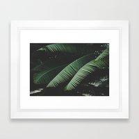 Night in the Tropics Framed Art Print