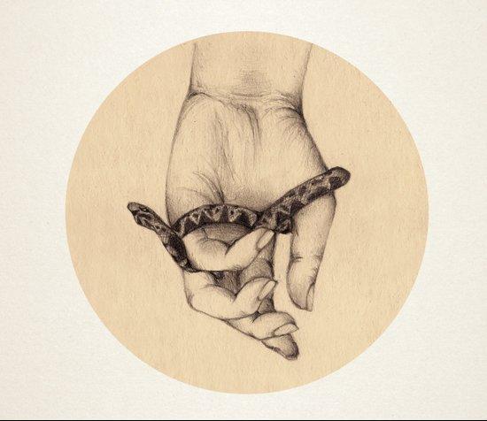 Organic IV Art Print