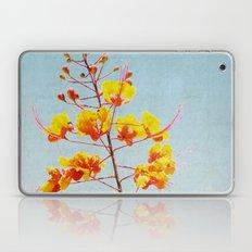 Radiant Laptop & iPad Skin