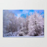 All Dressed In White Canvas Print
