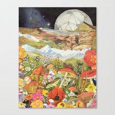 Shrooms Canvas Print