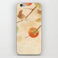 Winter Wren iPhone & iPod Skin