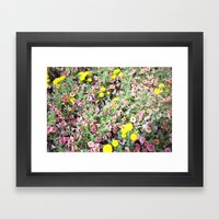 pink and yellow flowers Framed Art Print