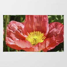 Red Poppy I Rug