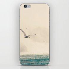 Seagulls in Flight iPhone & iPod Skin