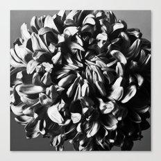 Flower 1 Canvas Print