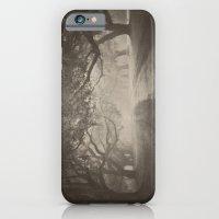 Avenue of Oaks iPhone 6 Slim Case