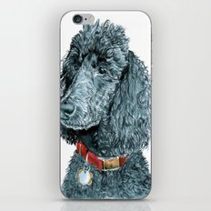 Whitney the Poodle iPhone & iPod Skin