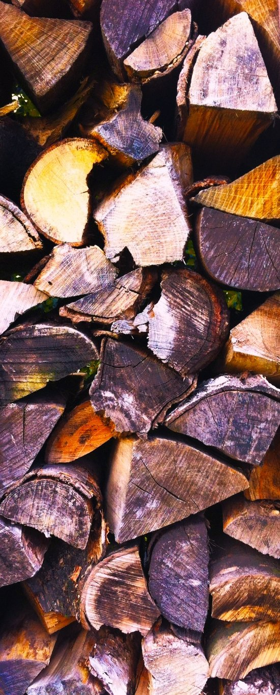 Wood Wood and Wood Art Print