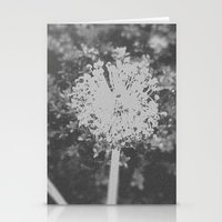 BW Spring Stationery Cards