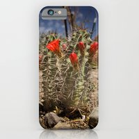 Prickly Beauty iPhone 6 Slim Case