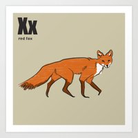 Red Fox Art Print
