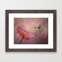 A Hummingbirds Dance Framed Art Print