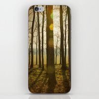 Afternoon Sunlight With … iPhone & iPod Skin