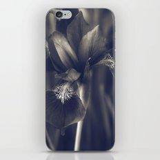 Iris iPhone & iPod Skin
