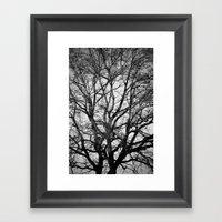 Up Framed Art Print