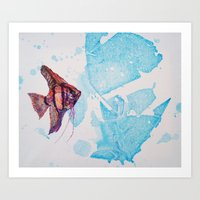 Little Angelfish Art Print