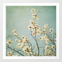 Magnolia blossoms. Mint Art Print