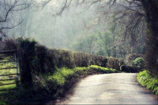 English Country Lane Art Print