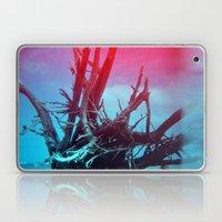 Weathered Lore II Laptop & iPad Skin