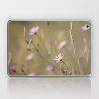 Purple Daisies Laptop & iPad Skin