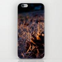 Fall Cones iPhone & iPod Skin