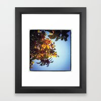 The Red Berry Tree (An I… Framed Art Print
