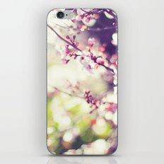 Daydreaming. iPhone & iPod Skin