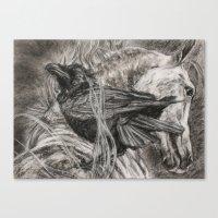 Wild Black And White Canvas Print
