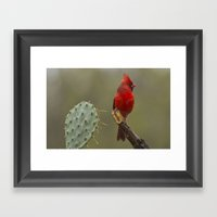 Cardinal In The Rain Framed Art Print