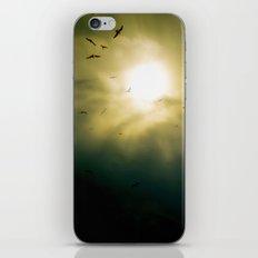 Wings Eternal iPhone & iPod Skin