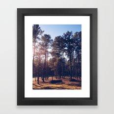 Spring Hope, North Carolina Framed Art Print