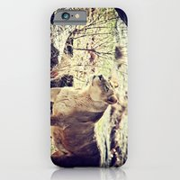 iPhone & iPod Case featuring Something Caught His Eye by Karol Livote