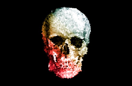 Skull Coloride Canvas Print