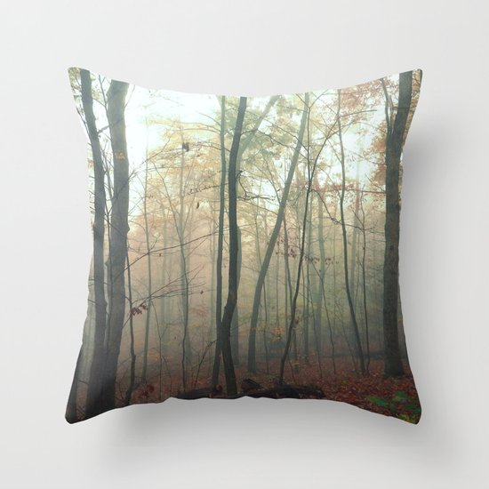 Wandering in a Fog Throw Pillow