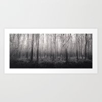 Black And White Forest 2… Art Print