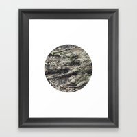 Planetary Bodies - Roots Framed Art Print