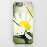 Daisy iPhone 6 Slim Case