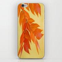 Fall mood iPhone & iPod Skin