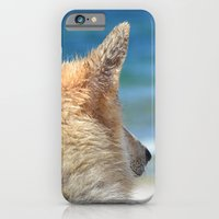 iPhone Cases featuring Dog at the beach by UtArt