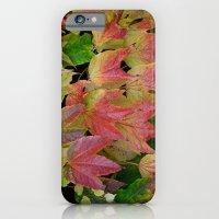Ivy's iPhone 6 Slim Case