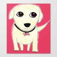 Bichon Bolognese dog Canvas Print