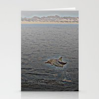 Dolphin Leap Stationery Cards