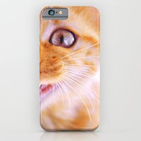 Angry Cat iPhone 6 Slim Case