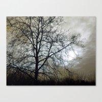 Winter Sky II Canvas Print