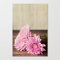 Rustic Pink Canvas Print